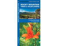 Rocky Mountain Trees and Wildflowers by James Kavanagh-WFP1583551158