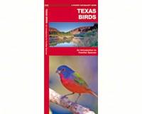 Texas Birds by James Kavanagh-WFP1583551189