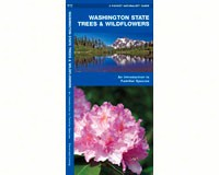Washington State Trees and Wildflowers by James Kavanagh-WFP1583551202