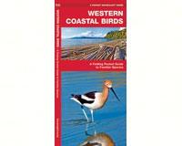 Western Coastal Birds by James Kavanagh-WFP1583551219