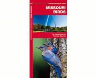 Missouri Birds by James Kavanagh-WFP1583551257