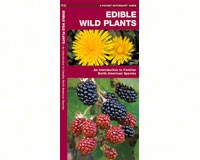 Edible Wild Plants by James Kavanagh-WFP1583551271