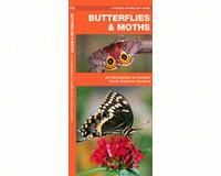 Butterflies and Moths by James Kavanagh-WFP1583551295