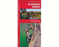 Alabama Birds by James Kavanagh-WFP1583551301
