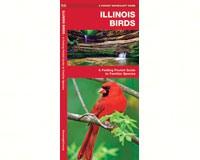 Illinois Birds by James Kavanagh-WFP1583551448