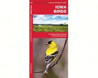 Iowa Birds by James Kavanagh-WFP1583551462