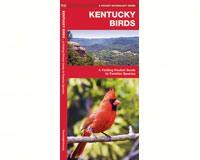 Kentucky Birds by James Kavanagh-WFP1583551479