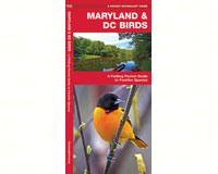 Maryland and DC Birds by James Kavanagh-WFP1583551516
