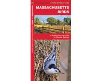 Massachusetts Birds by James Kavanagh-WFP1583551523