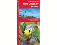 New Jersey Birds by James Kavanagh-WFP1583551578