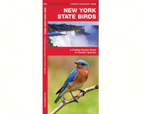 New York State Birds by James Kavanagh-WFP1583551592