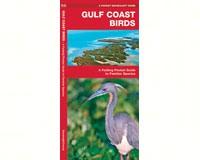 Gulf Coast Birds by James Kavanagh-WFP1583551622