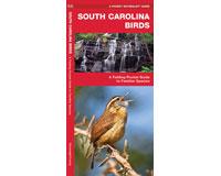 South Carolina Birds by James Kavanagh-WFP1583551677