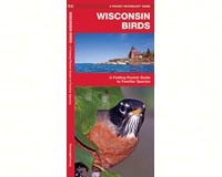 Wisconsin Birds by James Kavanagh-WFP1583551707