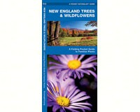 New England Trees and Wildflowers by James Kavanagh-WFP1583551745