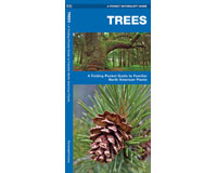 Trees by James Kavanagh by James Kavanagh-WFP1583551783