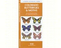Colorado Butterflies and Moths Field Guide by James Kavanagh-WFP1583554258