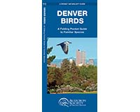Denver Birds A Folding Pocket Guide to Familiar Species-WFP1583559758