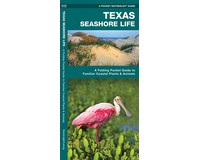 Texas Seashore Life by James Kavanagh-WFP1620052938