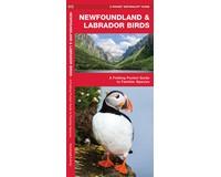 Newfoundland & Labrador Birds by James Kavanagh-WFP1620053652