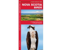 Nova Scotia Birds by James Kavanagh-WFP1620053669