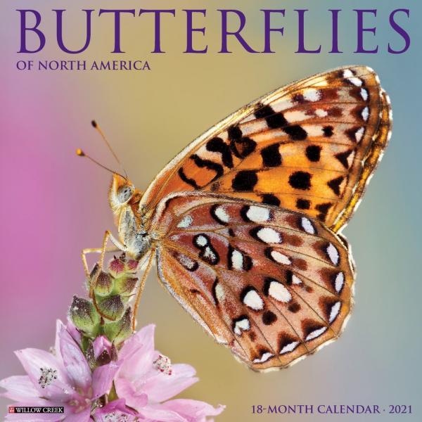 Butterflies 2021 Calendar