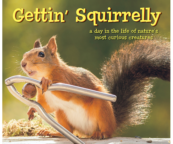 Gettin' Squirrelly