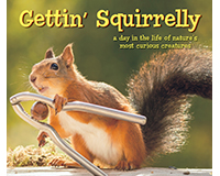 Gettin' Squirrelly-WC48383
