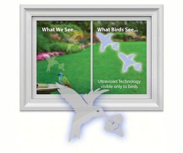 Hummingbird Decal (4 per package)