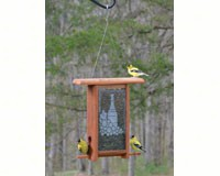 Wine Bottle Etched Glass bird feeder-WE201