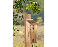 Novelty Wine Crate BlueBird House-WL24352