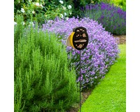 Bee Insect Shelted - Yard Stake-WL28560