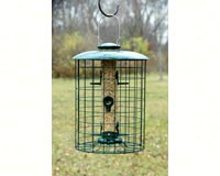 Caged 6 Port Seed Tube Feeder-WLC6S