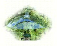 16in. Clear Plastic Squirrel Baffle-WLCLBAF16