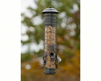 Dragonfly Squirrel Proof Feeder-WLNA32431