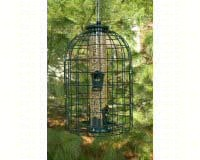 Caged Seed Tube Feeder-WLNATUBE3