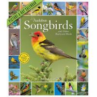 Audubon Songbirds and Other Backyard Birds 2021 Calendar-WMP100890