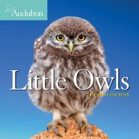 Audubon Little Owls 2021 Mini Calendar-WMP100906