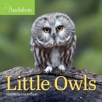 Audubon Little Owls Mini Wall Calendar 2022-WMP101256