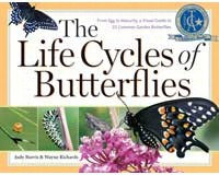 The Life Cycles of Butterflies by Judy Burris & Wayne Richards-WMP1580176170