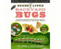 The Secret Lives of Backyard Bugs by Judy Burris & Wayne Richards-WMP1603425636