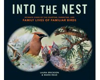 Into The Nest by Laura Erickson & Marie Read-WMP1612122298