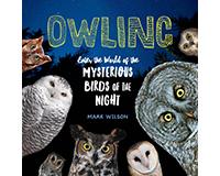 Owling by Mark Wilson-WMP1612129624